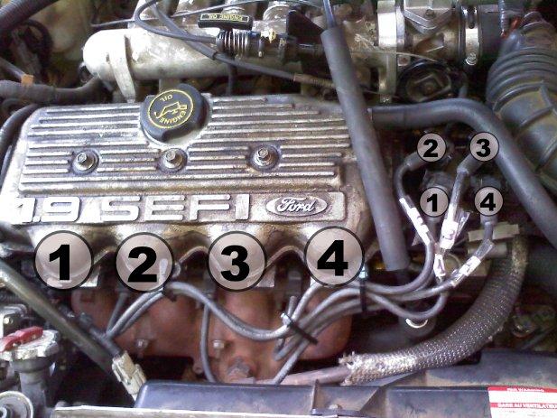 lx firing order          ford